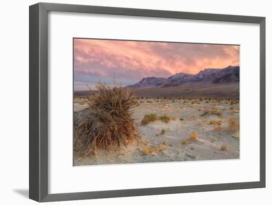 Sunset at Devil's Cornfield-Vincent James-Framed Photographic Print