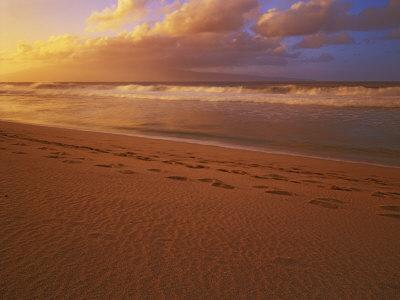 Sunset at DT Fleming State Beach, Maui, Hawaii, USA-Charles Gurche-Photographic Print
