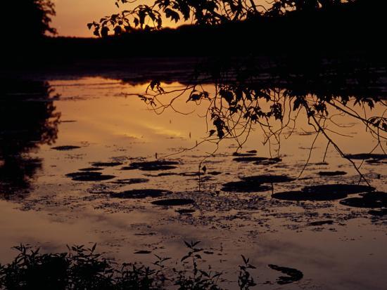 Sunset at Hematite Lake-Raymond Gehman-Photographic Print