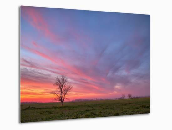 Sunset at Merced Wildlife Area, Central California-Vincent James-Metal Print
