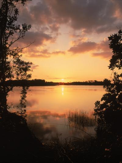 Sunset at Paurotis Pond, Everglades National Park, FL-David Davis-Photographic Print