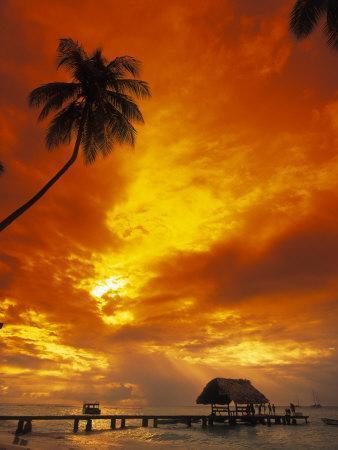 https://imgc.artprintimages.com/img/print/sunset-at-pigeon-point-tobago-caribbean_u-l-pxytrh0.jpg?p=0