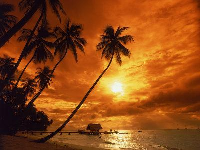 https://imgc.artprintimages.com/img/print/sunset-at-pigeon-point-tobago-caribbean_u-l-pxytxo0.jpg?p=0