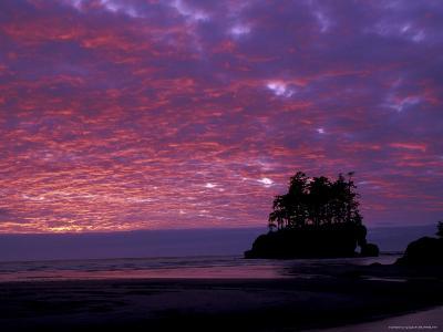 Sunset at Tounge Point, Olympic National Park, Washington, USA--Photographic Print
