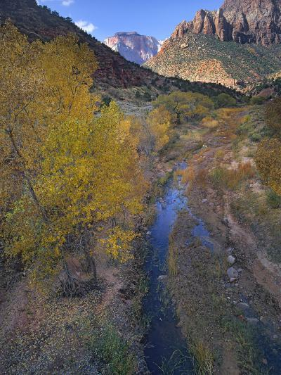 Sunset at West Temple and Pine Creek, Zion National Park, Utah-Tim Fitzharris-Photographic Print