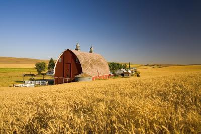 Sunset Barn and Wheat Field; Steptoe Butt, Washington, USA-Design Pics Inc-Photographic Print