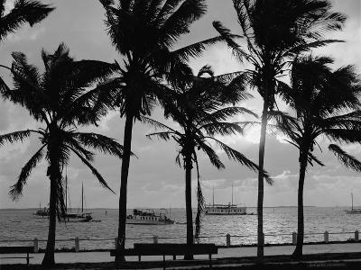 Sunset, Biscayne Bay, Miami, Florida, C.1910-20--Photographic Print