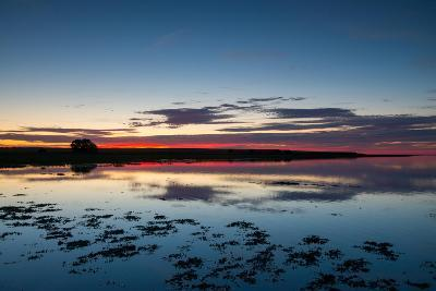 Sunset Blue Hour on the Causeway on Holy Island, Northumberland England UK-Tracey Whitefoot-Photographic Print