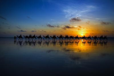 Sunset Camel Ride-Louise Wolbers-Photographic Print