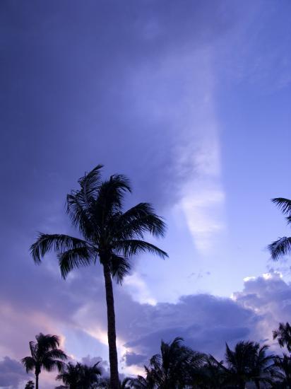 Sunset, Captiva Island, Florida-Maresa Pryor-Photographic Print