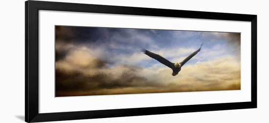 Sunset Flight-Jai Johnson-Framed Giclee Print