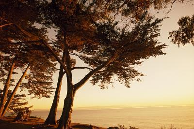 Sunset from Cliffs Above the Pacific Ocean at the Douglas Family Preserve-Macduff Everton-Photographic Print