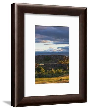 Sunset glow on tiered hills with snow-covered Mt. Hood in background-Sheila Haddad-Framed Photographic Print