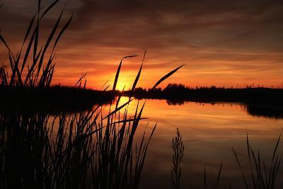 Sunset III-Beth Wold-Photographic Print