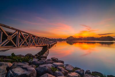 Sunset in Botanic Park- azirull-Photographic Print