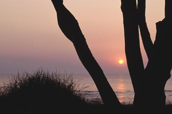 Sunset in Front of the Western Beach of Darss-Uwe Steffens-Photographic Print