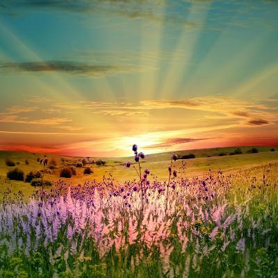 Sunset Is In The Field-nadiya_sergey-Art Print