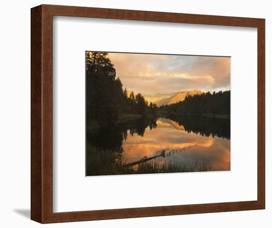 Sunset, Lake Matheson and Southern Alps, Westland, South Island, New Zealand, Pacific-Schlenker Jochen-Framed Photographic Print