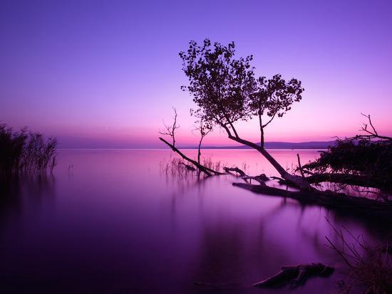 Sunset Lake. this Photo Make in Hungary. Sunset Whit Balaton-hofhauser-Photographic Print