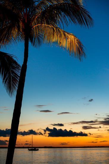Sunset Landscape - Miami - Florida-Philippe Hugonnard-Photographic Print