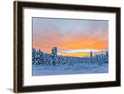 Sunset Lighting Up the Sky in Pink and Orange over a Snowy Forest-Mike Theiss-Framed Photographic Print