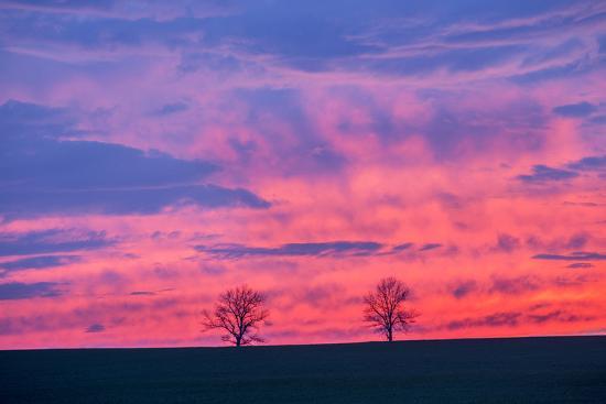 Sunset. Marion County, Illinois.-Richard & Susan Day-Photographic Print