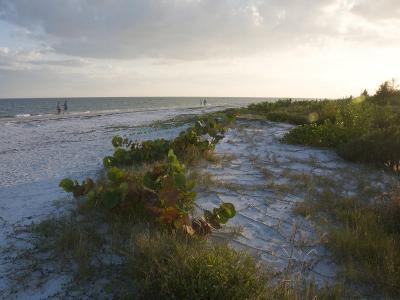 Sunset on Beach, Sanibel Island, Gulf Coast, Florida, United States of America, North America-Robert Harding-Photographic Print