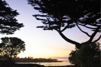 Sunset on Pacific Grove-Alan Hausenflock-Photographic Print