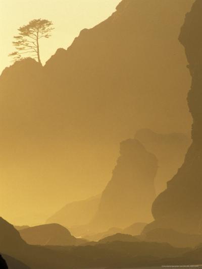 Sunset on Point of Arches, Olympic National Park, Washington, USA-Adam Jones-Photographic Print