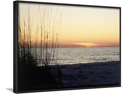 Sunset on Sanibel Island, Gulf Coast of FL-David Davis-Framed Photographic Print