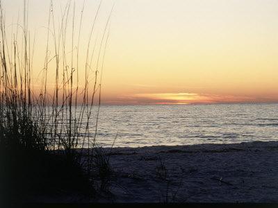 https://imgc.artprintimages.com/img/print/sunset-on-sanibel-island-gulf-coast-of-fl_u-l-pxytdz0.jpg?p=0