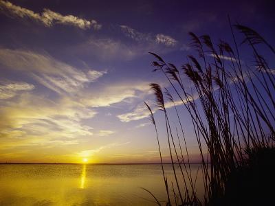 Sunset on the Barnegat Bay and Sea Oats-Bob Krist-Photographic Print
