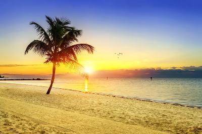Sunset on the Beach-vent du sud-Photographic Print