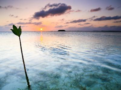 Sunset on the Flats of Acklins Island, Bahamas-Drew Rush-Photographic Print