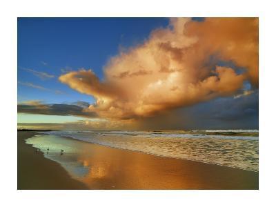Sunset on the ocean, New South Wales, Australia-Frank Krahmer-Giclee Print