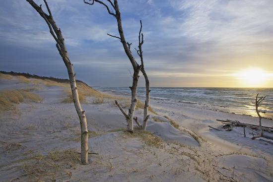 Sunset on the Western Beach of Darss Peninsula-Uwe Steffens-Photographic Print