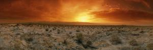 Sunset over a Desert, Palm Springs, California, USA