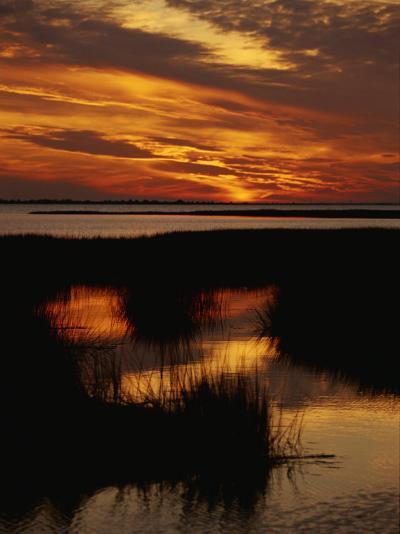 Sunset over a Salt Marsh with Cordgrass-Raymond Gehman-Photographic Print