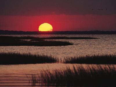 Sunset over Chincoteague Island Marsh, Virginia-Medford Taylor-Photographic Print