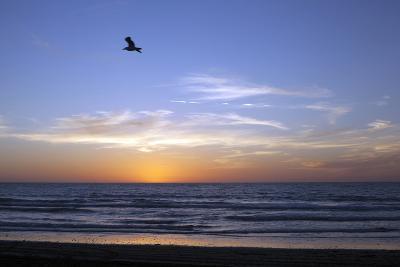 Sunset over La Jolla Coast, California, United States of America, North America-Thomas L-Photographic Print
