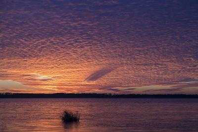 Sunset over Lake Mattamuskeet-Robbie George-Photographic Print