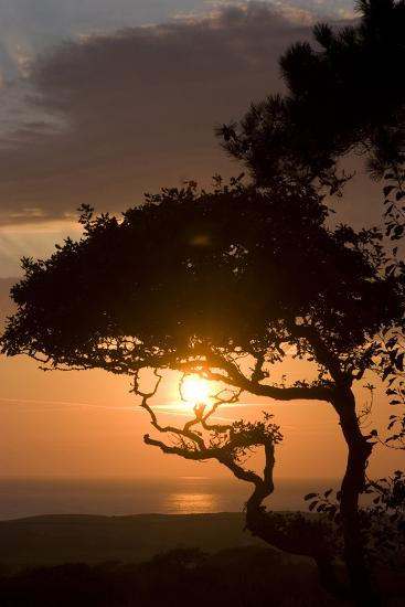 Sunset over the Atlantic, Near Bude, Cornwall, Uk-Natalie Tepper-Photographic Print