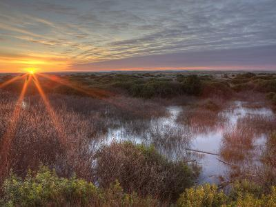 Sunset over Wetlands at Ocean Shores, Washington, USA-Tom Norring-Photographic Print