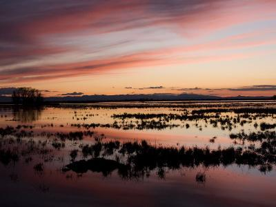 Sunset over Wetlands at the Merced National Wildlife Refuge-Marc Moritsch-Photographic Print