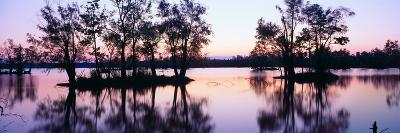 Sunset over Wildlife Refuge of Lake Fausse Pointe State Park, Louisiana--Photographic Print