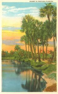 Sunset, Palm Trees, Florida