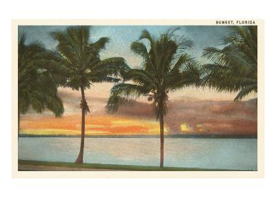 Sunset, Palm Trees, Florida--Art Print