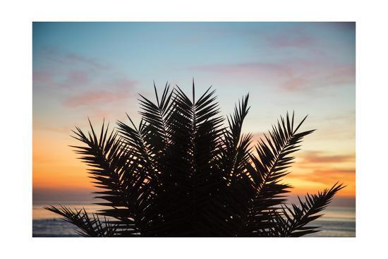 Sunset Palms II-Laura Marshall-Art Print