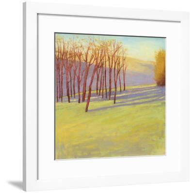 Sunset Reverie-David Skinner-Framed Giclee Print