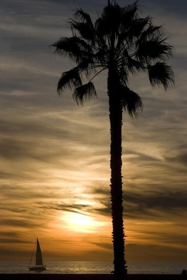 Sunset, Santa Monica Beach-Natalie Tepper-Photographic Print